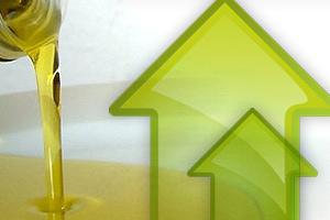 crecera el mercado uruguayo en 2013