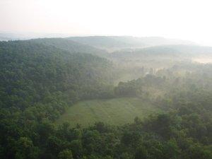 Impacto Económico de la Forestación en Uruguay
