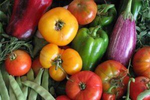 Ferias de productos saludables en el LATU