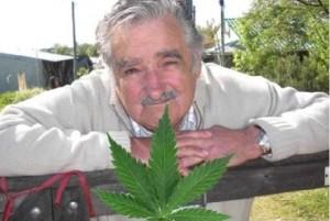 Uruguay legaliza la Marihuana