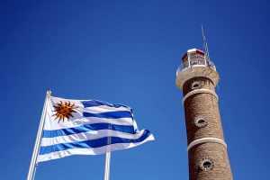 Cómo Convertirse en Proveedor del Estado Uruguayo