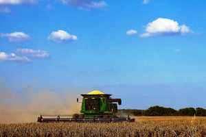 Commodities uruguayos caerían por tercer año consecutivo
