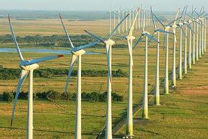 UTE lanza fideicomiso para parque eólico Tacuarembo