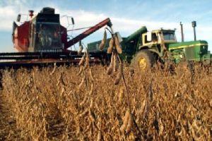 cosecha de soya en Uruguay