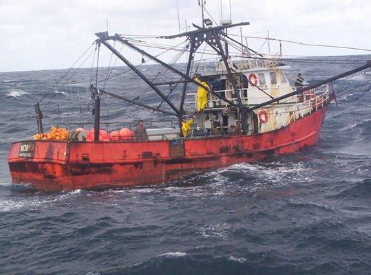 19-08-2015 Prospecciones de ANCAP bajaron 40 las capturas de peces
